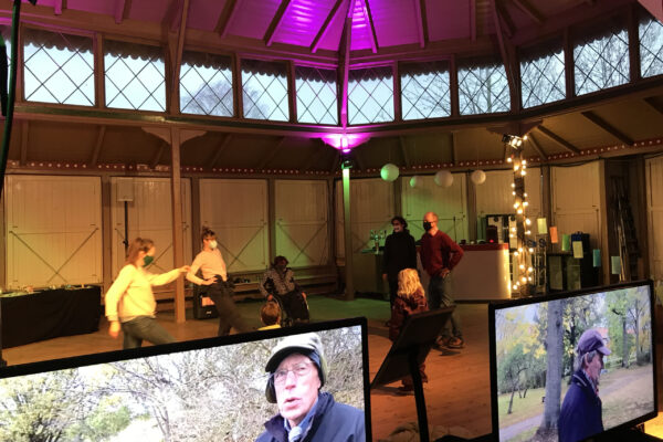 Pavillonen 21nov_skærmogdans